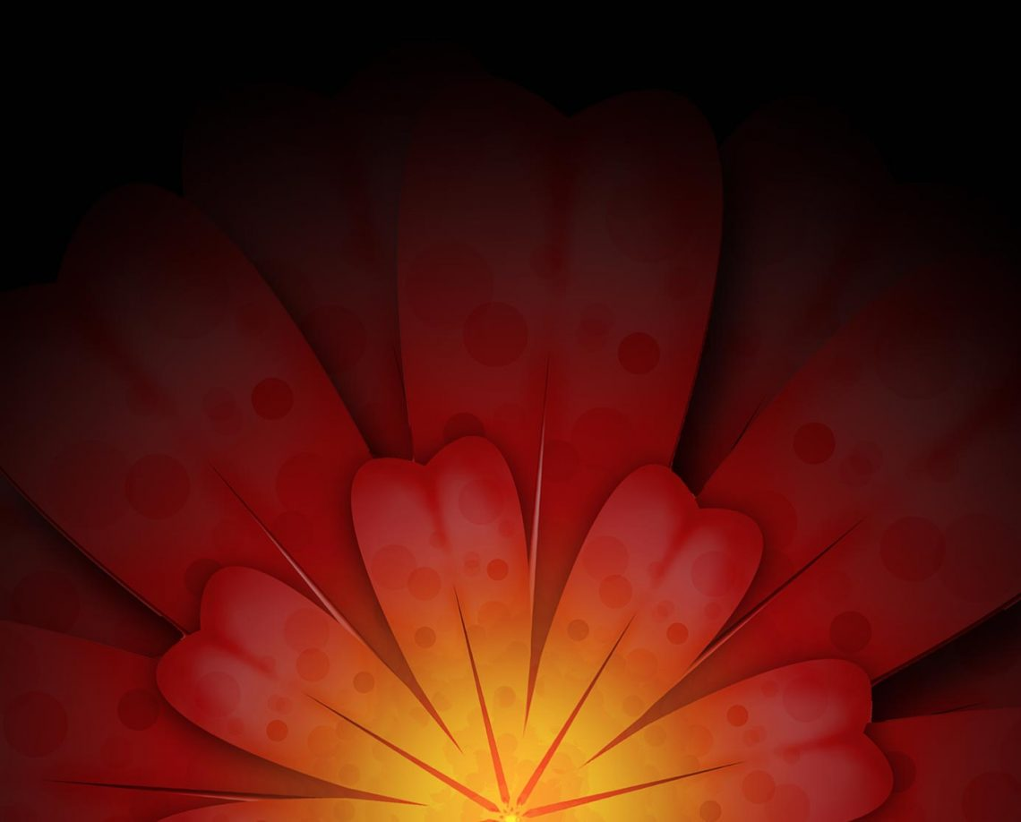 red and yellow flower background